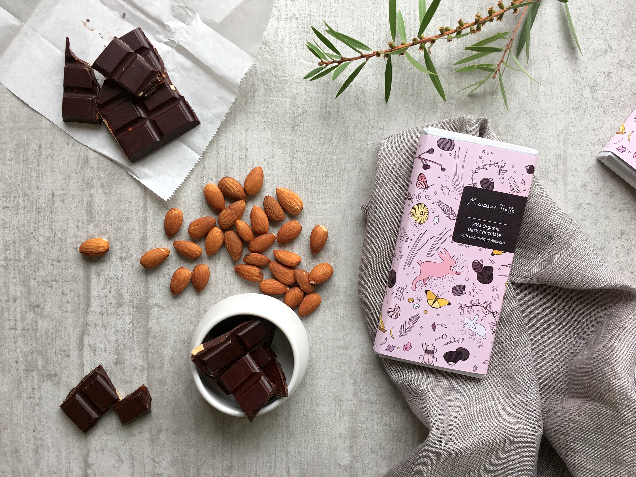 Hybrid Expression Chocolate packaging illustration